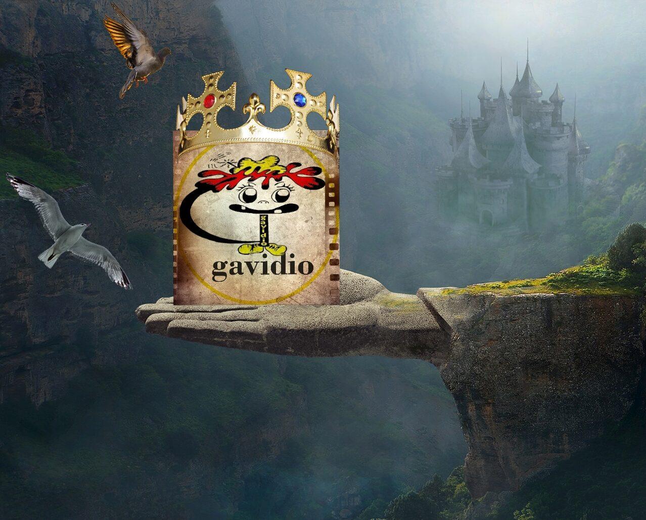 GAVIDIO.COM – SITO IN ALLESTIMENTO